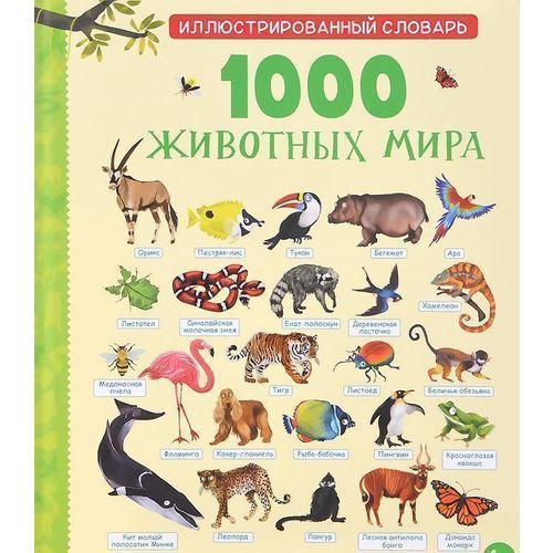 1000 животных мира тейлор барбара поллок стив дискавери царство животных