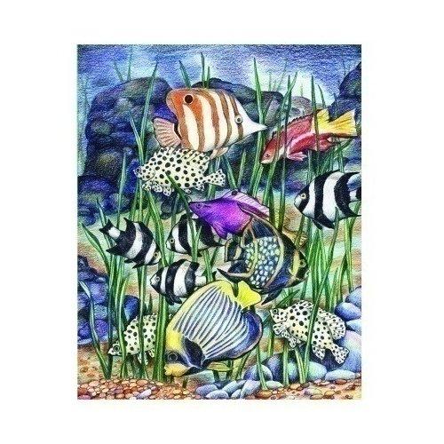 Раскраска по номерам Тропические рыбы, 22,5 х 29,8 см