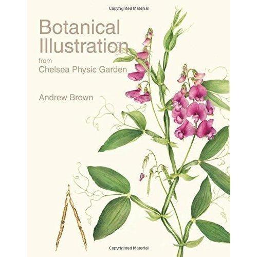 Botanical Illustration from Chelsea Physic Garden murder in chelsea