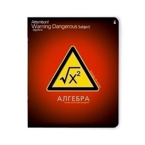 Тетрадь в клетку Очень опасный предмет. Алгебра А5, 48 листов, в клетку тетрадь в линейку очень опасный предмет русский язык