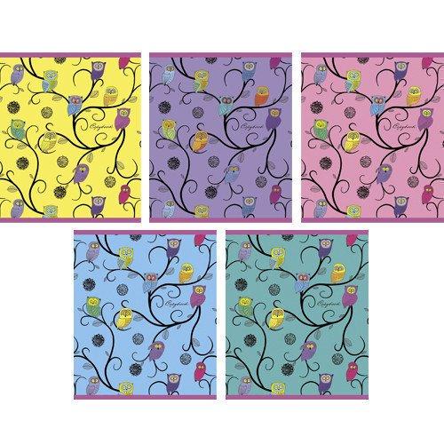 Тетрадь в клетку Разноцветные совы А5 акафист преподобному серафиму саровскому чудотворцу