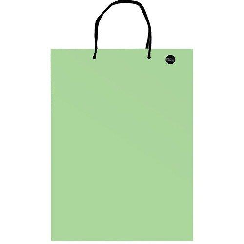 Пакет подарочный А3, светло-зеленый, 30 х 40 см пакет подарочный winter wings пластиковый 30 х 30 х 10 см в ассортименте