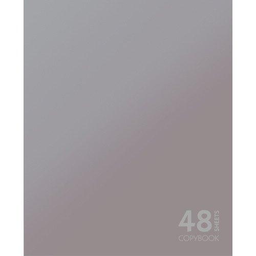 Тетрадь в клетку Сияние цвета. Серебристый А5 тетрадь любимые цвета а5