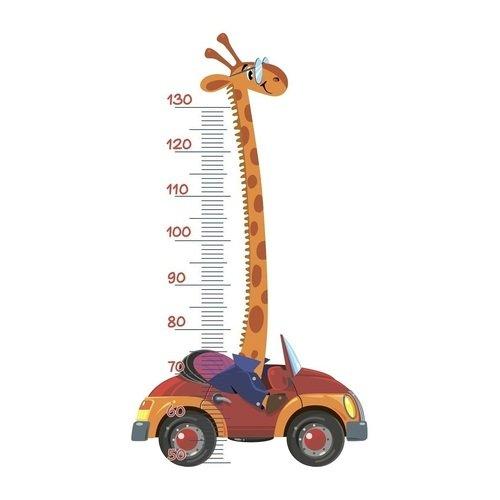 Ростомер Жираф на машине наклейка