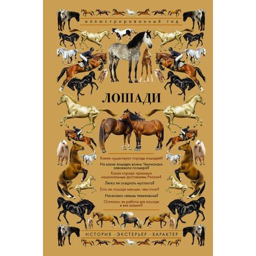 Фото - Лошади. Иллюстрированный гид спектор анна артуровна лошади иллюстрированный гид