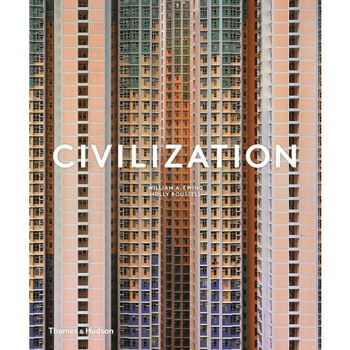 Civilization: The Way We Live Now недорого
