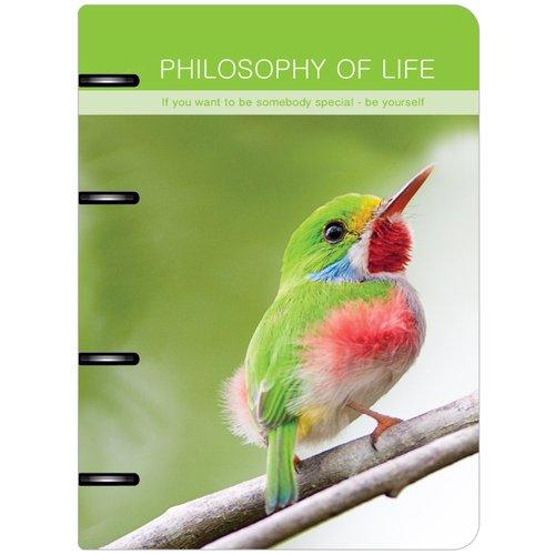 Тетрадь общая Birds на кольцах, 120 листов, в клетку, 16,3 х 21,2 см