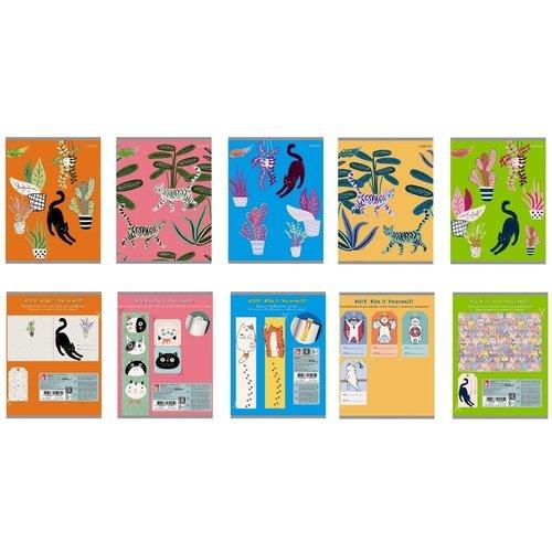 Тетрадь DIY Collection. Кошачий променад А5, 48 листов, в клетку, в ассортименте ульяновский дом печати тетрадь 80 листов в клетку то 508