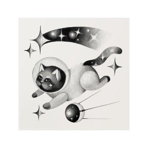 """Переводная татуировка """"Starcat"""", 10 х 10 см мнетату временная переводная татуировка легкость"""