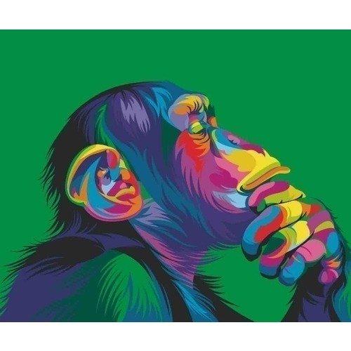 цена на Раскраска по номерам Радужная обезьяна, 40 х 50 см