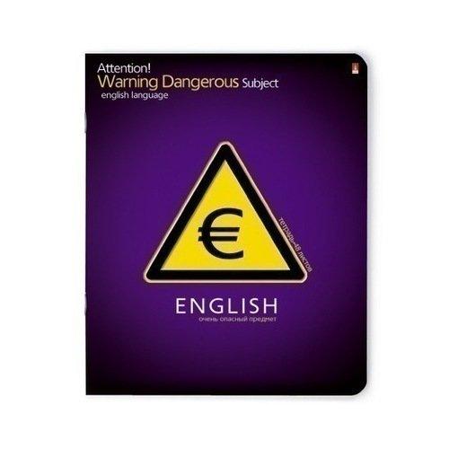 Тетрадь в клетку Очень опасный предмет Английский язык ваш канцтоварищ тетрадь классика иностранный язык 48 листов в клетку