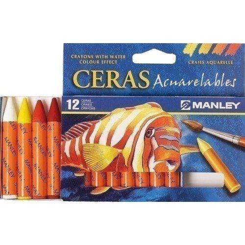 Восковая акварельная пастель Manley, 12 цветов manley mccormack b wilson v international practice development
