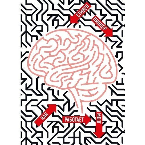Как работает мозг в в сутужко оценки и модели реальности в когнитивных науках