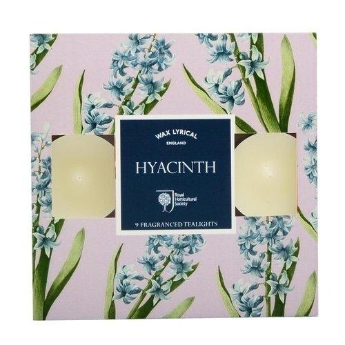 Набор ароматических чайных свечей Гиацинт printio гиацинт