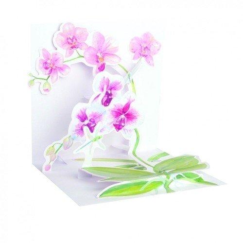 "Открытка ""Орхидеи"""