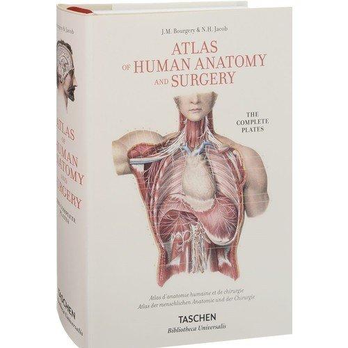 Atlas Оf Human Anatomy Аnd Surgery atlas of anatomy page 8