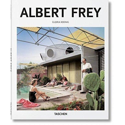 Albert Frey the cartoon utopia