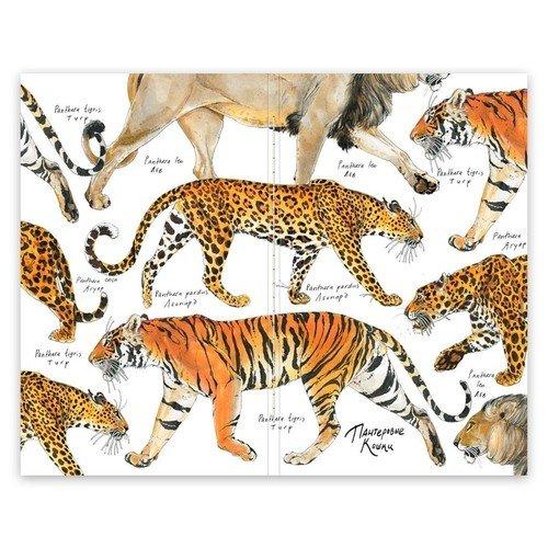 """Скетчбук """"Pocket Fox&Owl"""" A6, 32 листа, 100 г/м2, пантеровые кошки фото"""