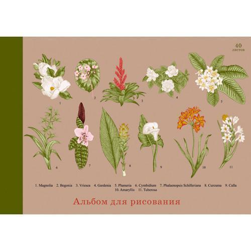 """Альбом для рисования """"Ботанический сад"""""""
