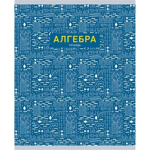 Тетрадь предметная Палитра знаний. Алгебра, 48 листов, в клетку, 60 г/м2 hatber тетрадь коллекция знаний алгебра 48 листов в клетку