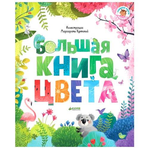 Купить Первые книжки малыша. Большая книга. Цвета, Познавательная литература