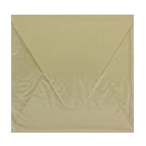 Конверт подарочный С1, бежевый, 10 х 10 см конверт подарочный дарите счастье хорошего дня цвет мультиколор 13 х 16 см 2729810