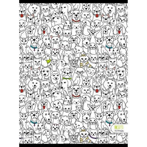 """Тетрадь для конспектов """"Парад зверей"""" А4, 48 листов, в клетку"""