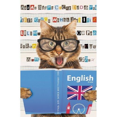 Тетрадь для записи иностранных слов Кот-студент А6, 48 листов тетрадь для записи иностранных слов а6 лак вид 2