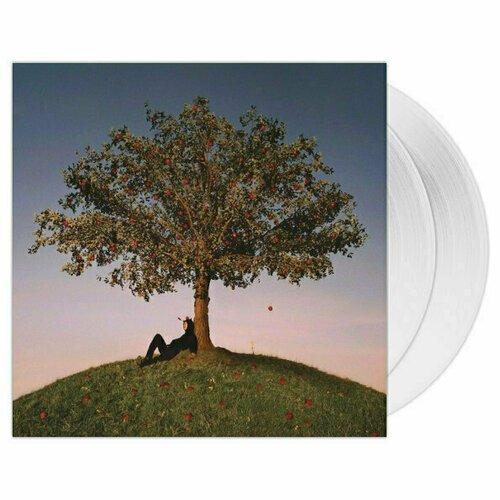 little feat little feat original album series 5 cd Виниловая пластинка Slowthai – Tyron. 2 LP